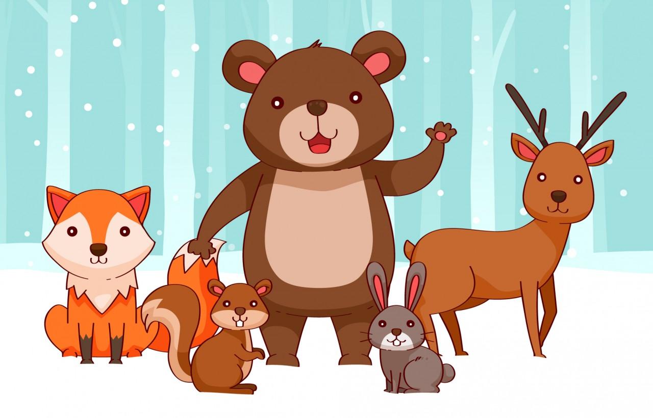 Mit jósol a medve?